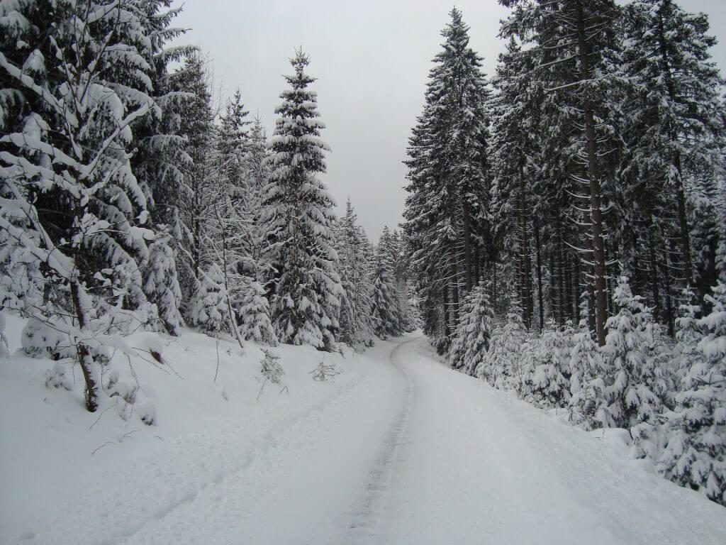 Langlaufen Winterberg Duitsland
